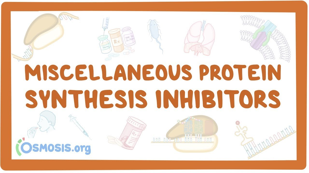 Miscellaneous protein synthesis inhibitors