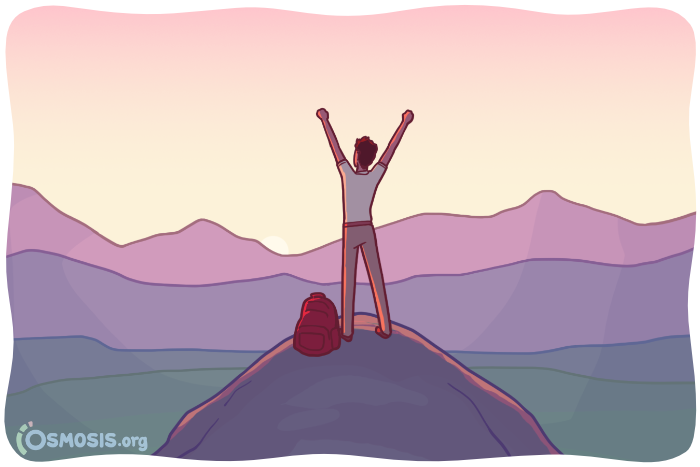 Osmosis illustration of a nursing student at the summit of a mountain.