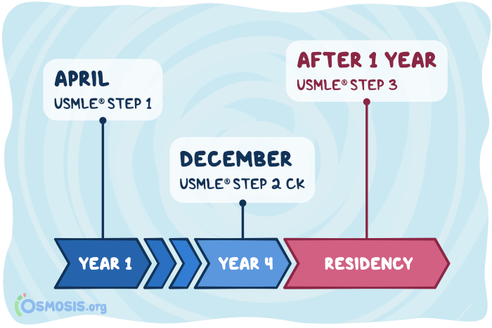Osmosis illustration of the USMLE boards timeline for US medical students.