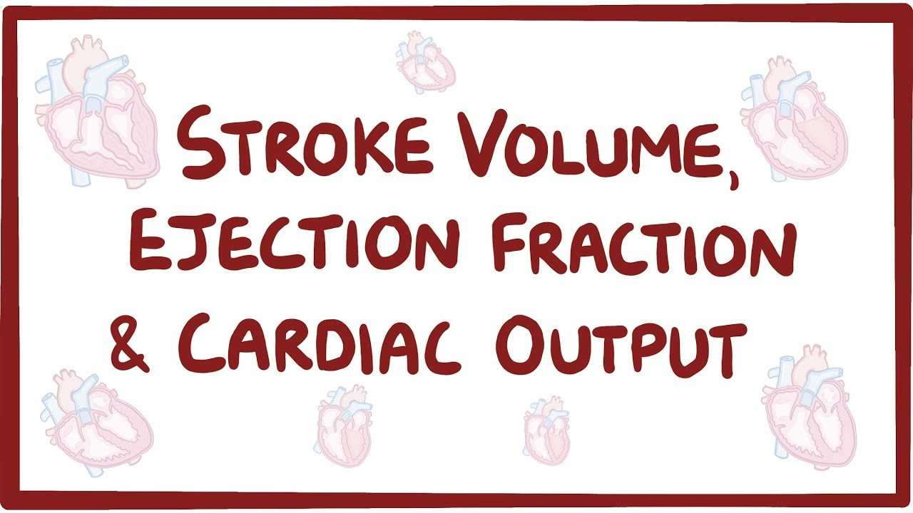 Stroke volume, ejection fraction, and cardiac output