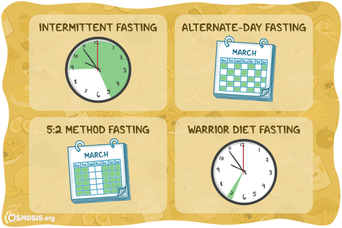 Osmosis illustration of different fasting diet types.