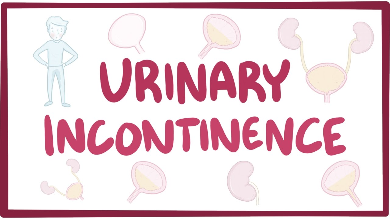 Urinary incontinence - Osmosis Video Library