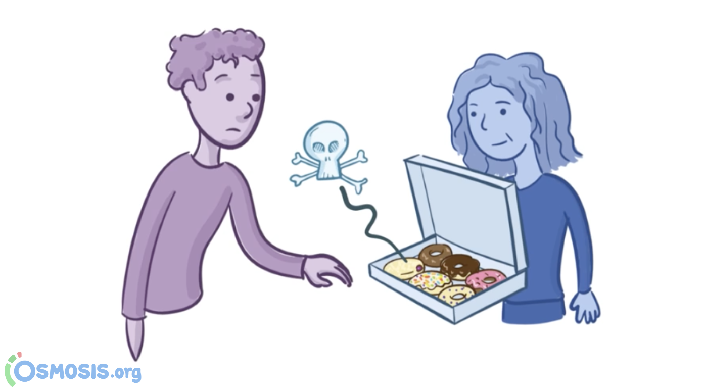 Osmosis illustration of Debbie serving some flu-contaminated donuts to her colleague.