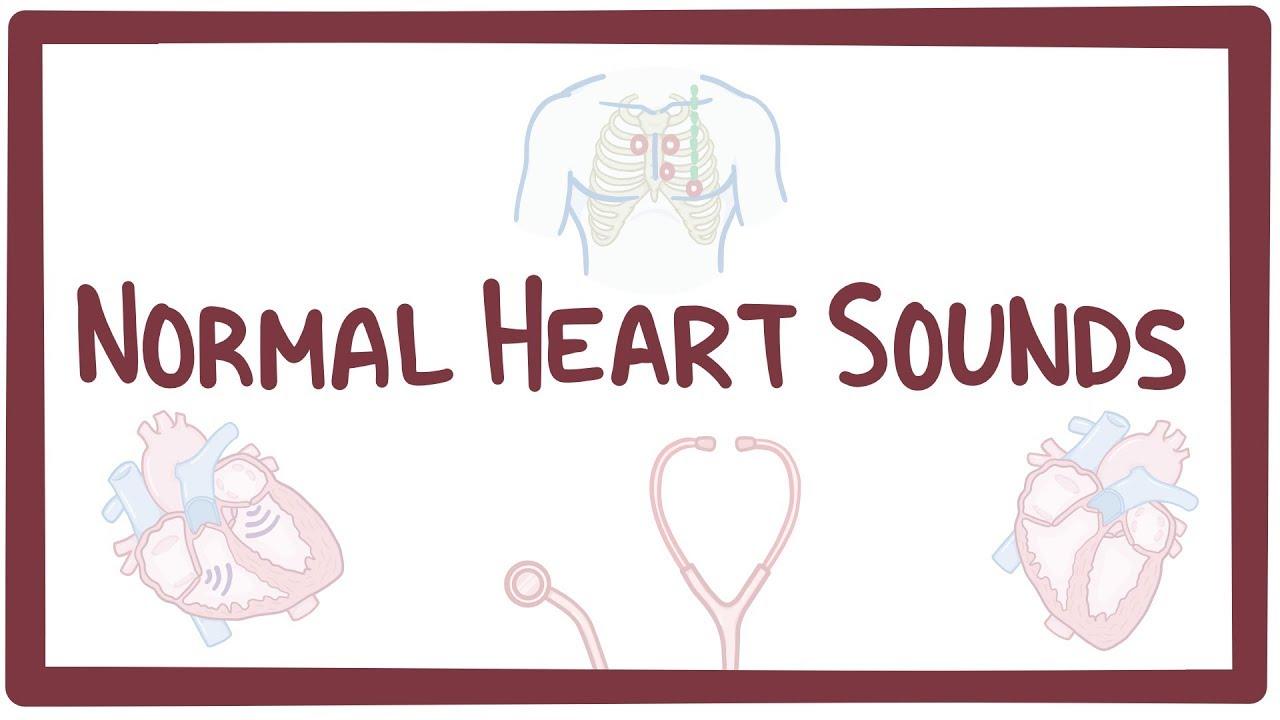 Normal heart sounds - Osmosis