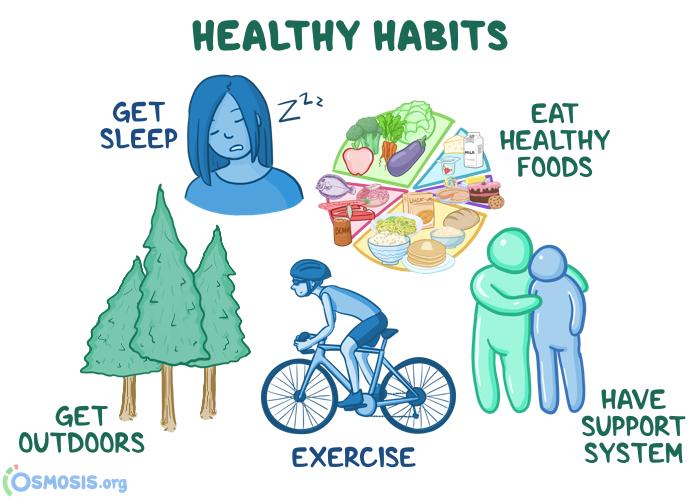 Osmosis illustration of healthy habits for medical students preparing for USMLE Step 1.