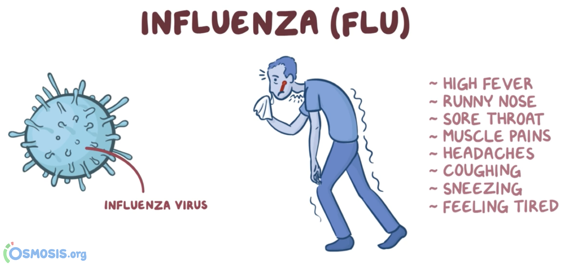 Osmosis illustration of the symptoms of influenza.