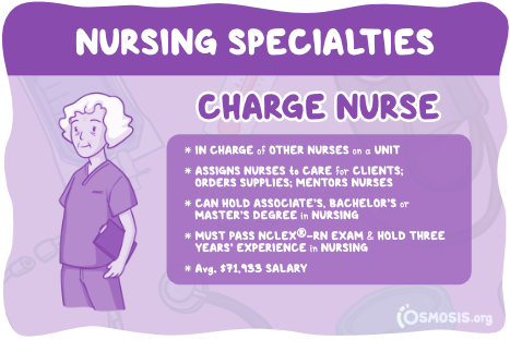Osmosis illustration showing a charge nurse's responsibilities, education requirements, and salary expectations.