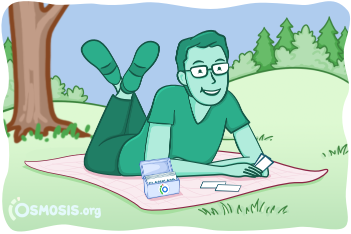 Osmosis illustration of a medical student studying for USMLE Step 1 using Flashcards.