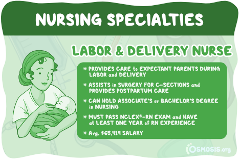 Osmosis illustration showcasing a labor and delivery nurse's responsibilities, salary expectations, and educational requirements.