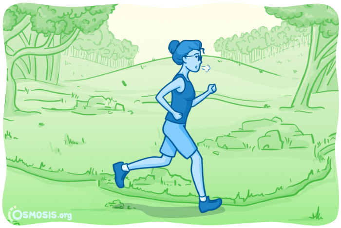 Osmosis illustration of a PA student who's out for a run.