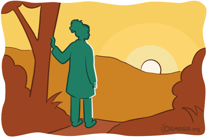 Osmosis illustration of a doctor looking toward a better future.