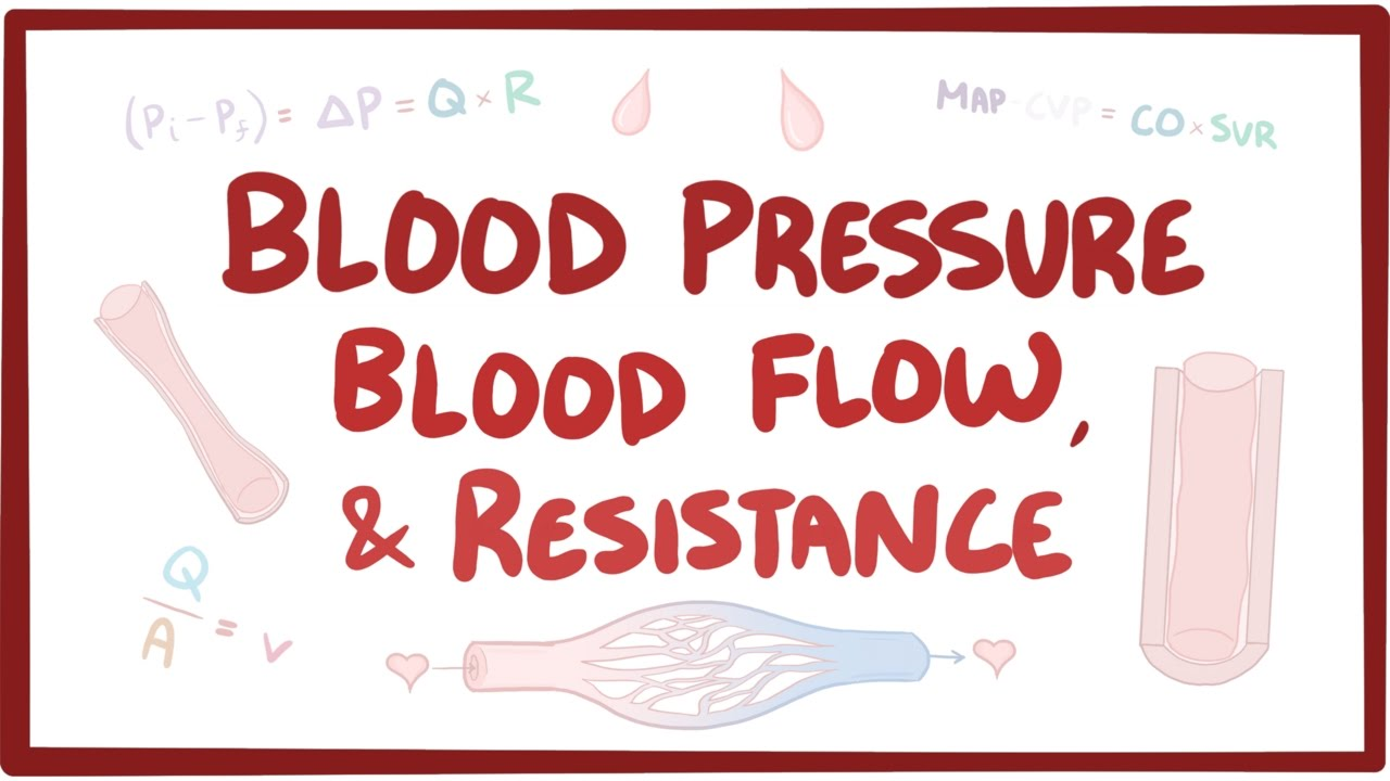 Blood Pressure Blood Flow And Resistance